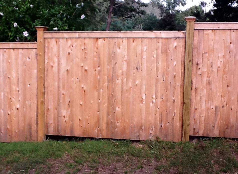Tongue and Groove Fences 17