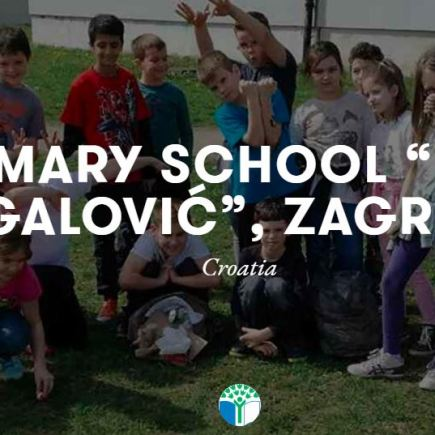 Primary School Fran Galovic Croatia