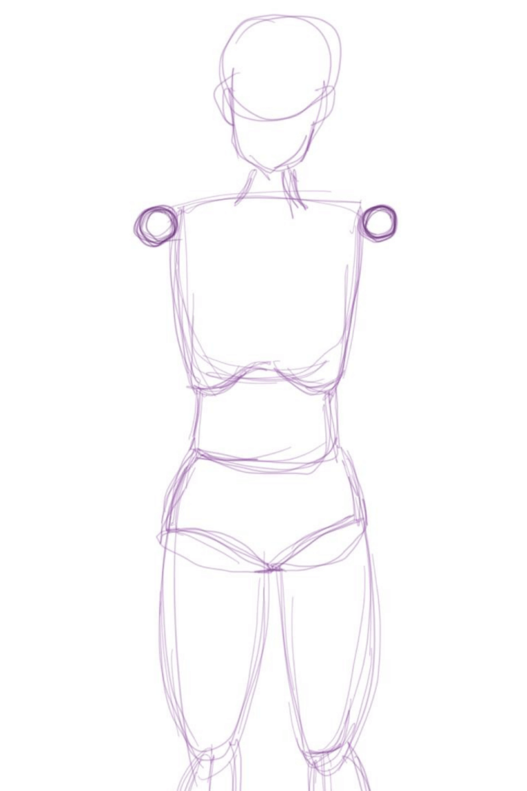 Draw the shoulder joints