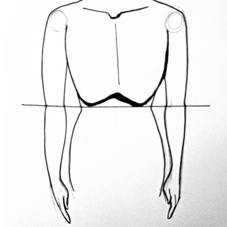 How to find the elbow proportions of the arms