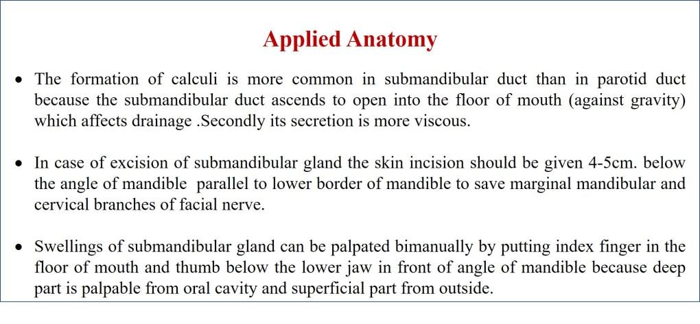 applied anatomy of submandibular gland