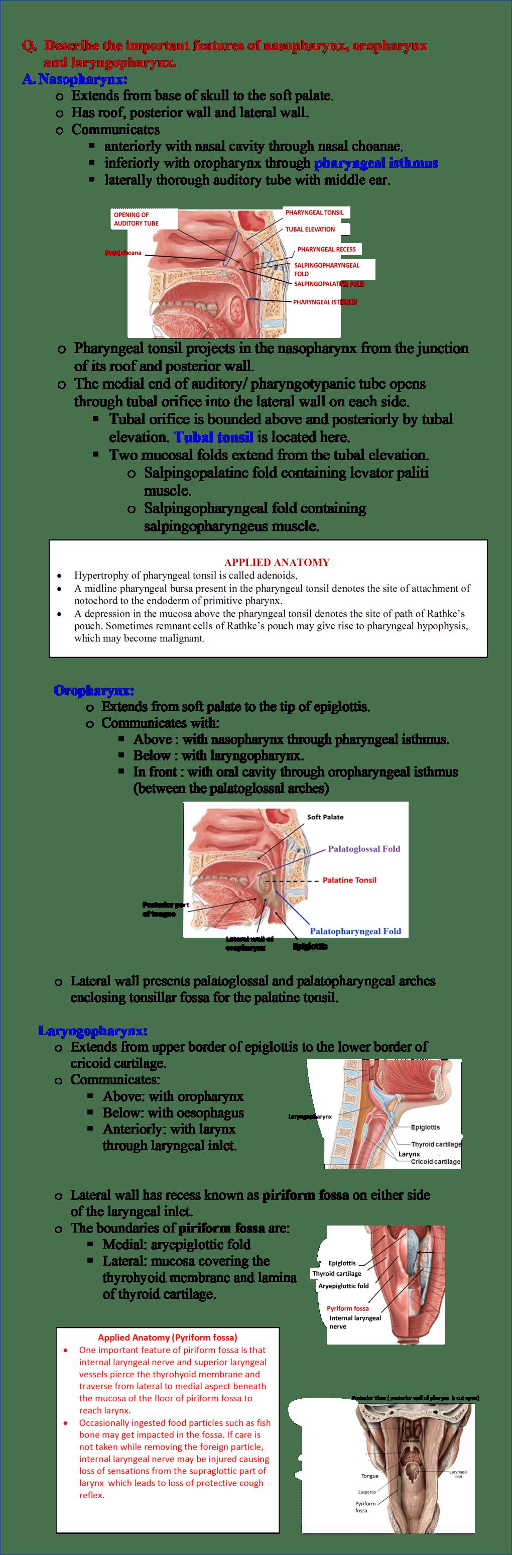Features of Nasopharynx, oropharynx and laryngopharynx