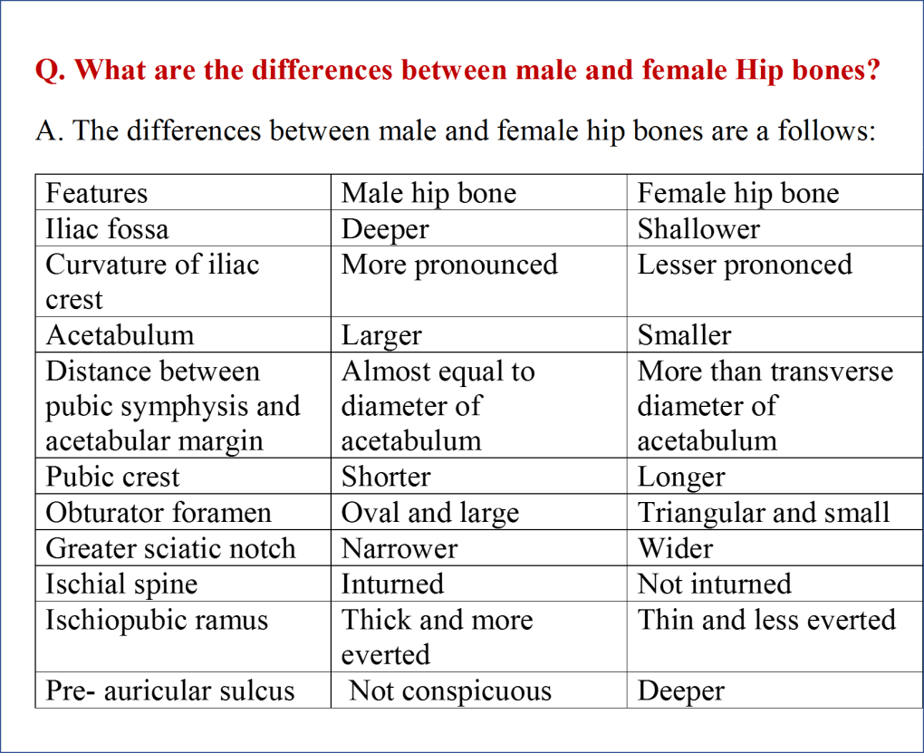 Differences between male and female hip bones