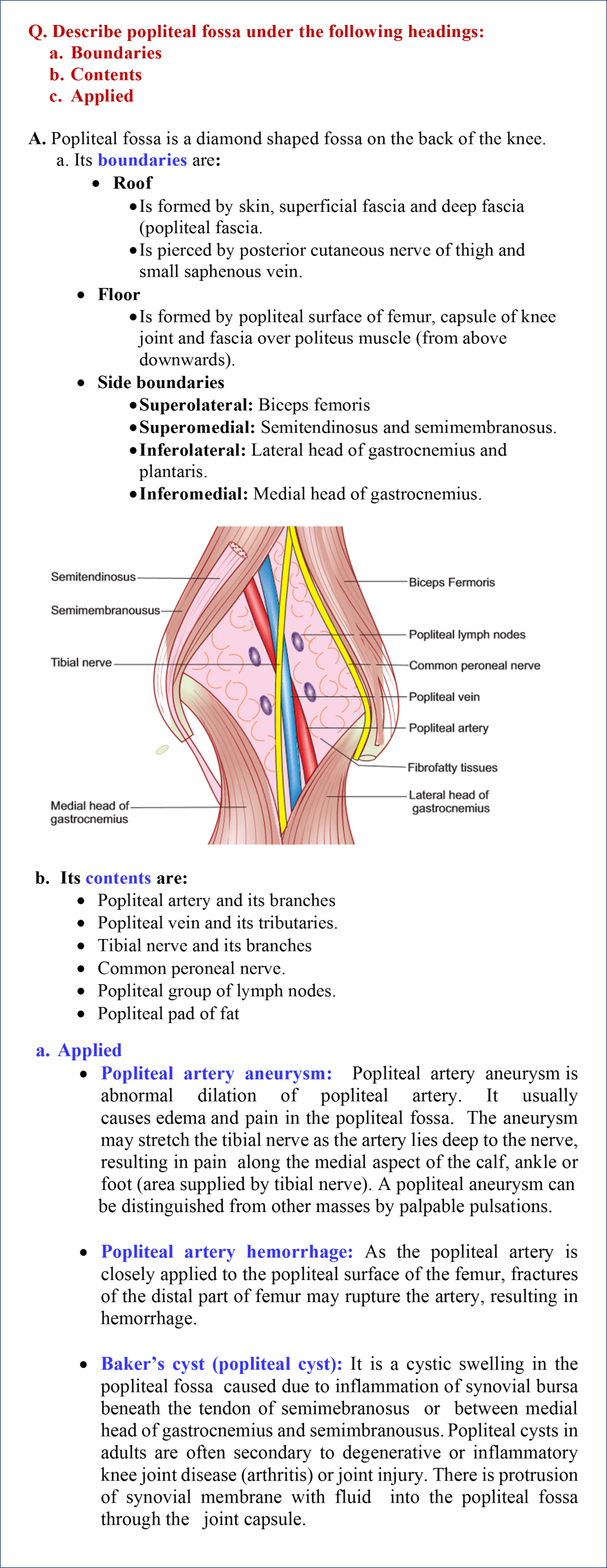 Popliteal fossa- boundaries, contents, and applied anatomy