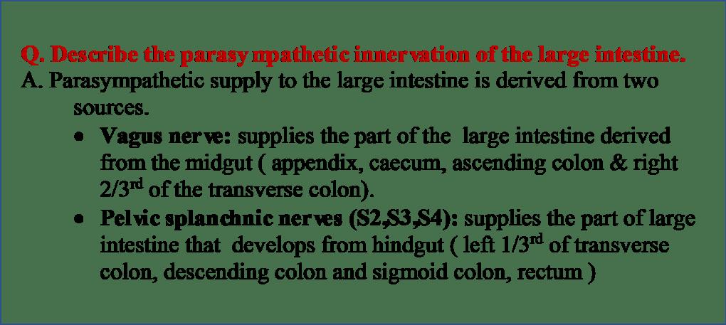 Parasympathetic Innervation of  Large intestine