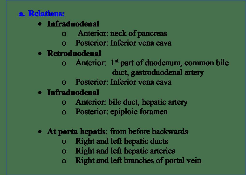 Relations of Portal Vein