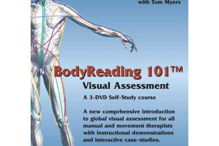 anatomy trains body reading » 4K Pictures | 4K Pictures [Full HQ ...