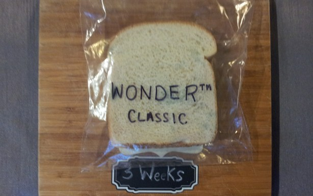 Wonder Bread after three weeks in a plastic bag