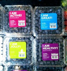 Be healthy! Eat blueberries. Healthy eating on a budget.