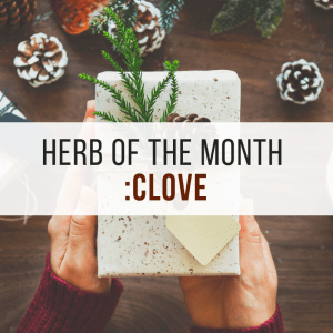 Herb of the Month: Clove