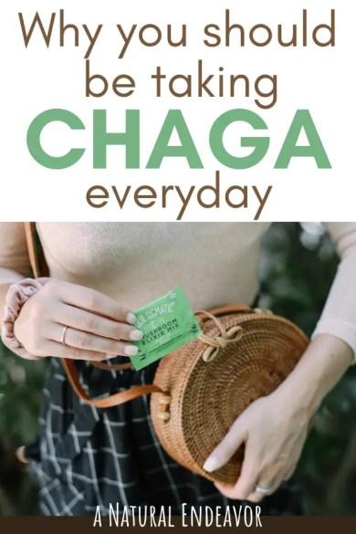 why you should take Chaga everyday