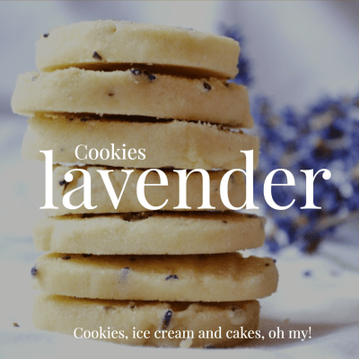 101 Things to do With Lavender!