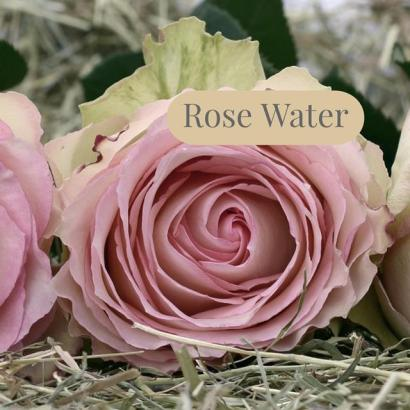 Rose Water Recipe for Face