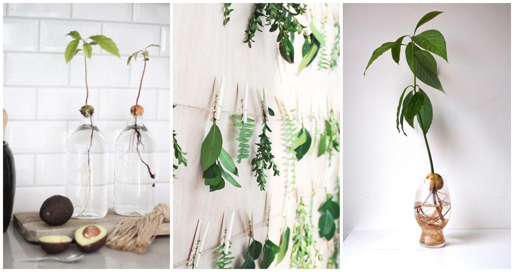Usa frascos de cristal con agua y añádeles hojas tropicales.