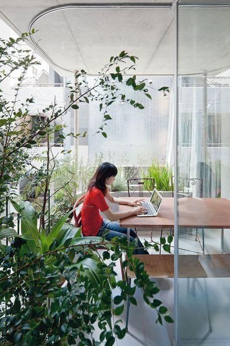 Espacios de trabajos donde la naturaleza crea un ambiente propenso para la productividad y el bienestar, biofilia @Utrillanais