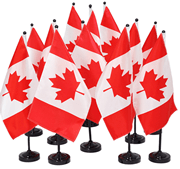 Canadian Flags are carried by the PC BC Colour Guard