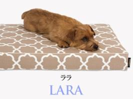 Banner-slide_lara-RB-mocha
