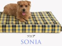 Banner-slide_sonia-RB