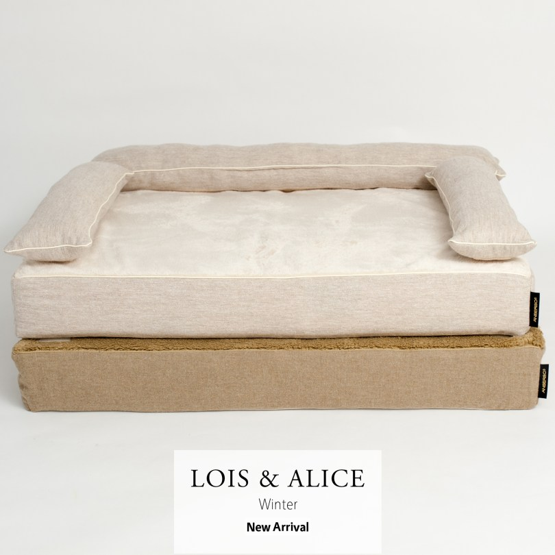 LOIS.ALICE-sq