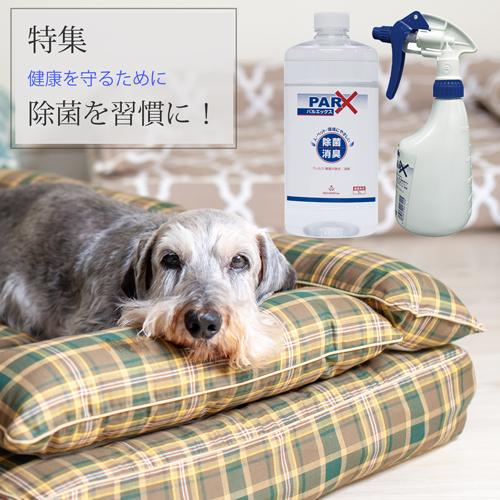 除菌を習慣に 犬の洗える日本製ベッド:ロイヤルベッド - アンベルソ