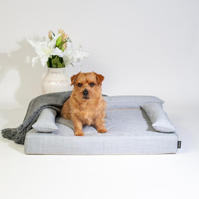 クッション付きベッドカバー:オルガ(グレー) 犬のベッド:アンベルソ
