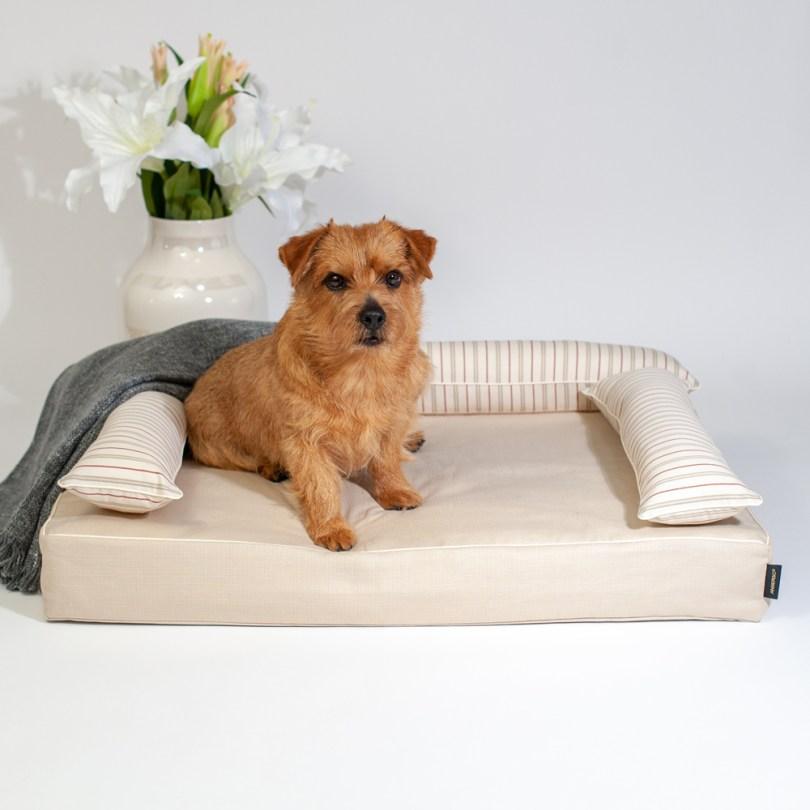 クッション付きベッドカバー:ファビア(グレージュ・ストライプ) 犬のベッド:アンベルソ