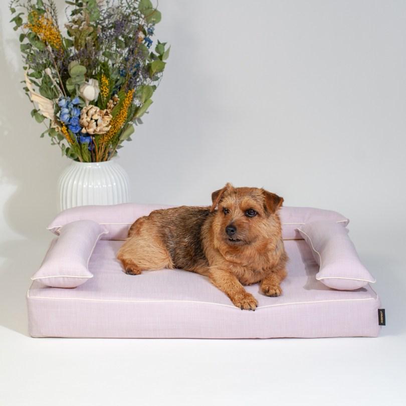 クッション付きベッドカバー:オルガ(ピンク) 犬のベッド:アンベルソ