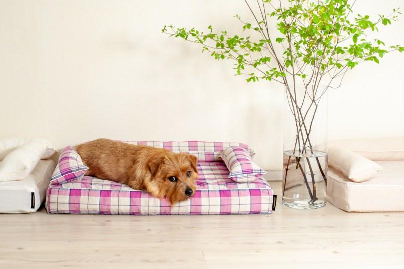 あご乗せクッション付きカバー:リン 犬のベッド:アンベルソ