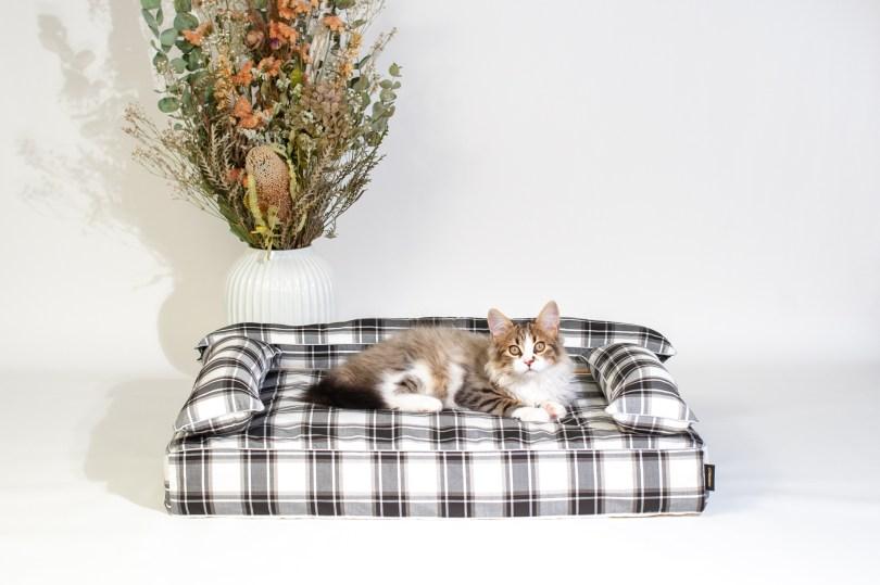 あご乗せクッション付きカバー:オーガニック・サマードリーム 犬のベッド:アンベルソ