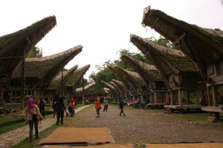 Rumah adat tongkonan dan lumbung padi