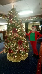 ANB Holiday Elf 3