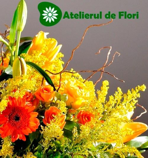 Crini, crizanteme, gerbera, solidago