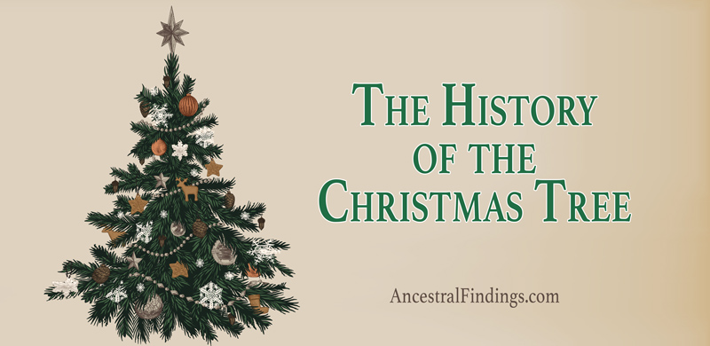 the history of the christmas tree ancestral findings - Christmas Tree History