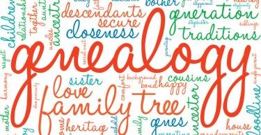 How Popular is Genealogy?