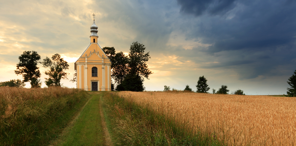 Your Polish Surname and its Meaning | Ancestral Findings