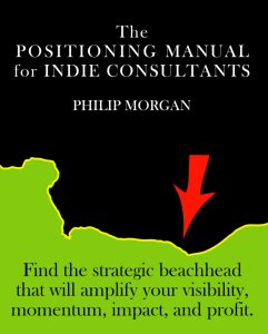 Cover Image of The Positioning Manual