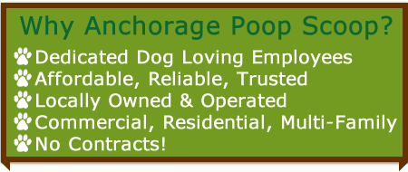 anchorage poop scoop service