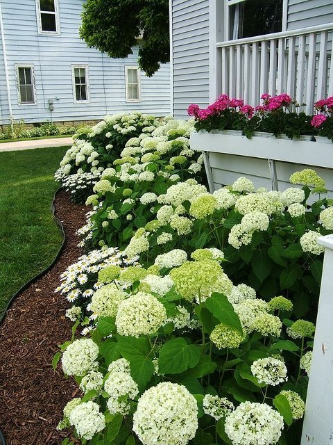 Beautiful Flower Garden for Your Front Yard 30