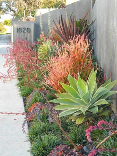 Cheap Front Yard Landscaping Ideas 45