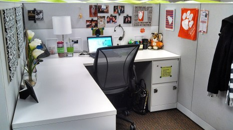 Cubicle Workspace Decorating Ideas 23