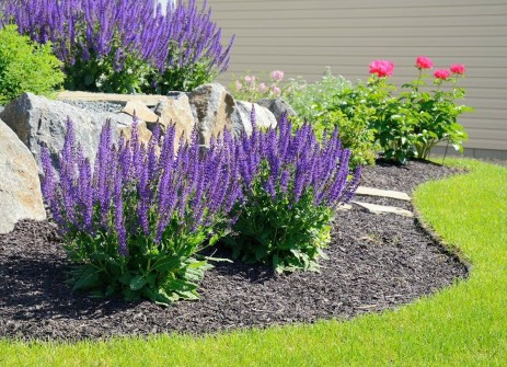 Easy And Low Maintenance Front Yard Landscaping Ideas 19