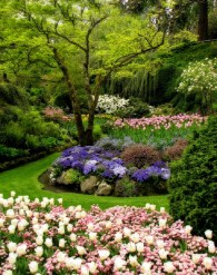 Easy And Low Maintenance Front Yard Landscaping Ideas 39