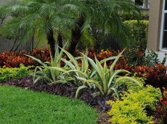 Examples Landscaping Ideas You can Put in House Page 06