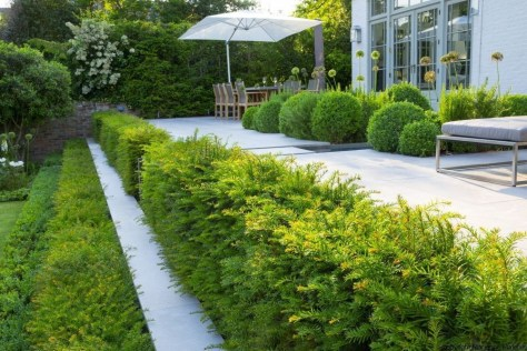 Examples Landscaping Ideas You can Put in House Page 31