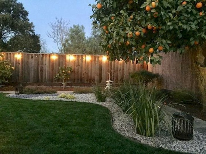 Amazing Privacy Fence Ideas to Perfect Your Backyard 40