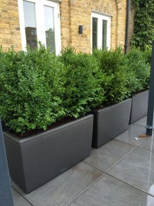 Amazingly Creative Long Planter Ideas for Your Patio 36