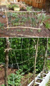 Cool DIY Garden Trellis Ideas 11