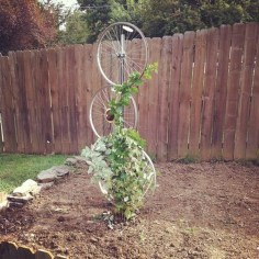 Cool DIY Garden Trellis Ideas 20