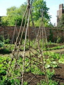 Cool DIY Garden Trellis Ideas 32