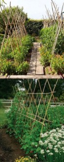 Cool DIY Garden Trellis Ideas 36